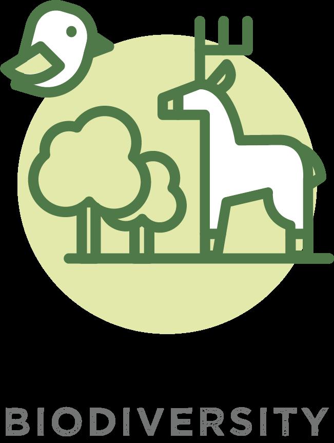 Plant Trees for Biodiversity